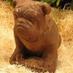 Bulldog Dw