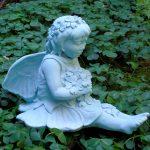 Dogwood Fairy Cp