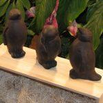 Penguin Trio Dw