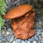Rainman With Mushroom Tc