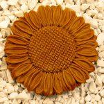 Sunflower Stepstone Tc