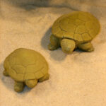 Turtle Pair Wb
