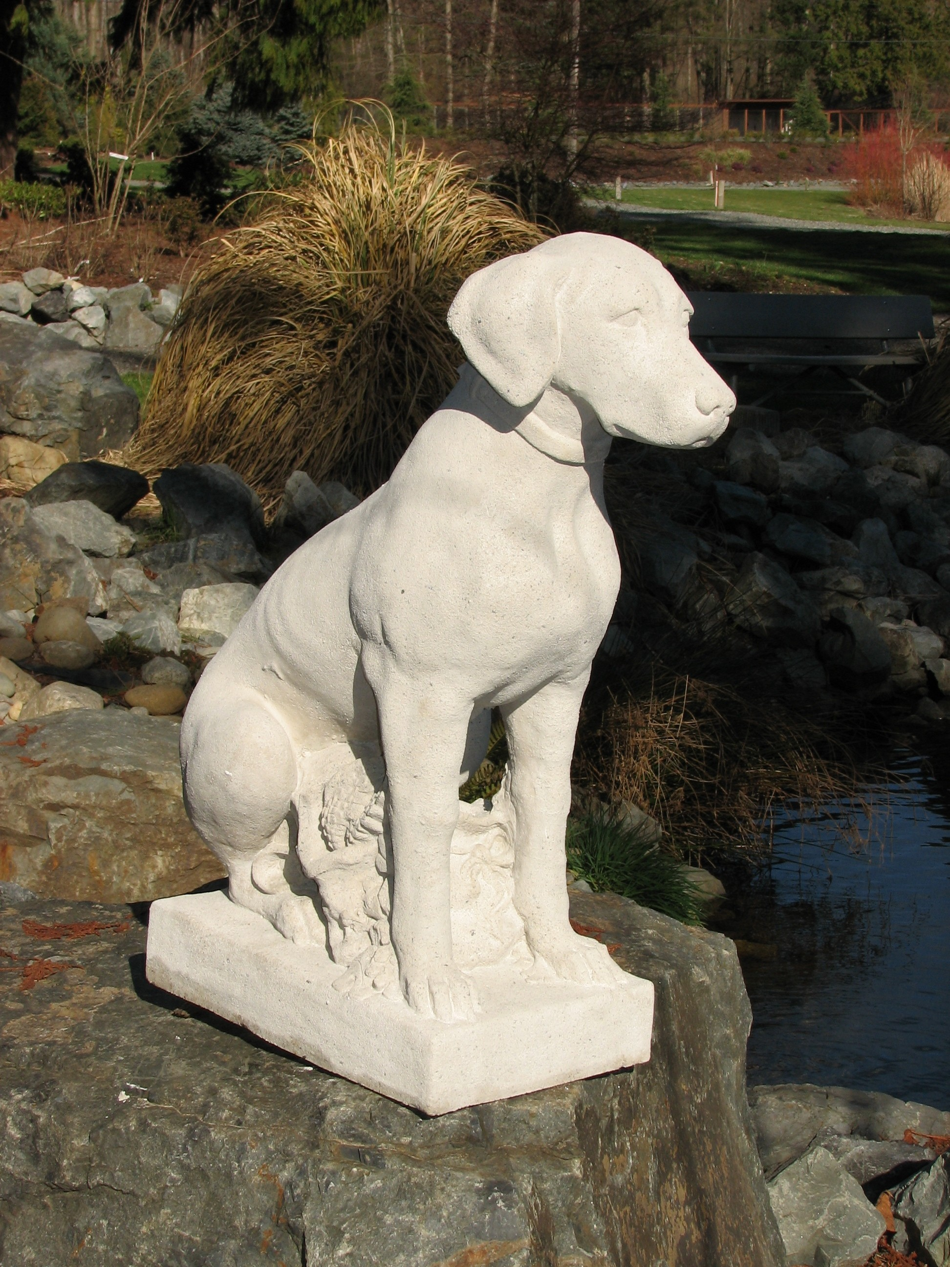 Pointer, Limestone