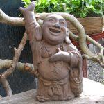 Buddha Dw