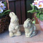 Bunny Pair Wb