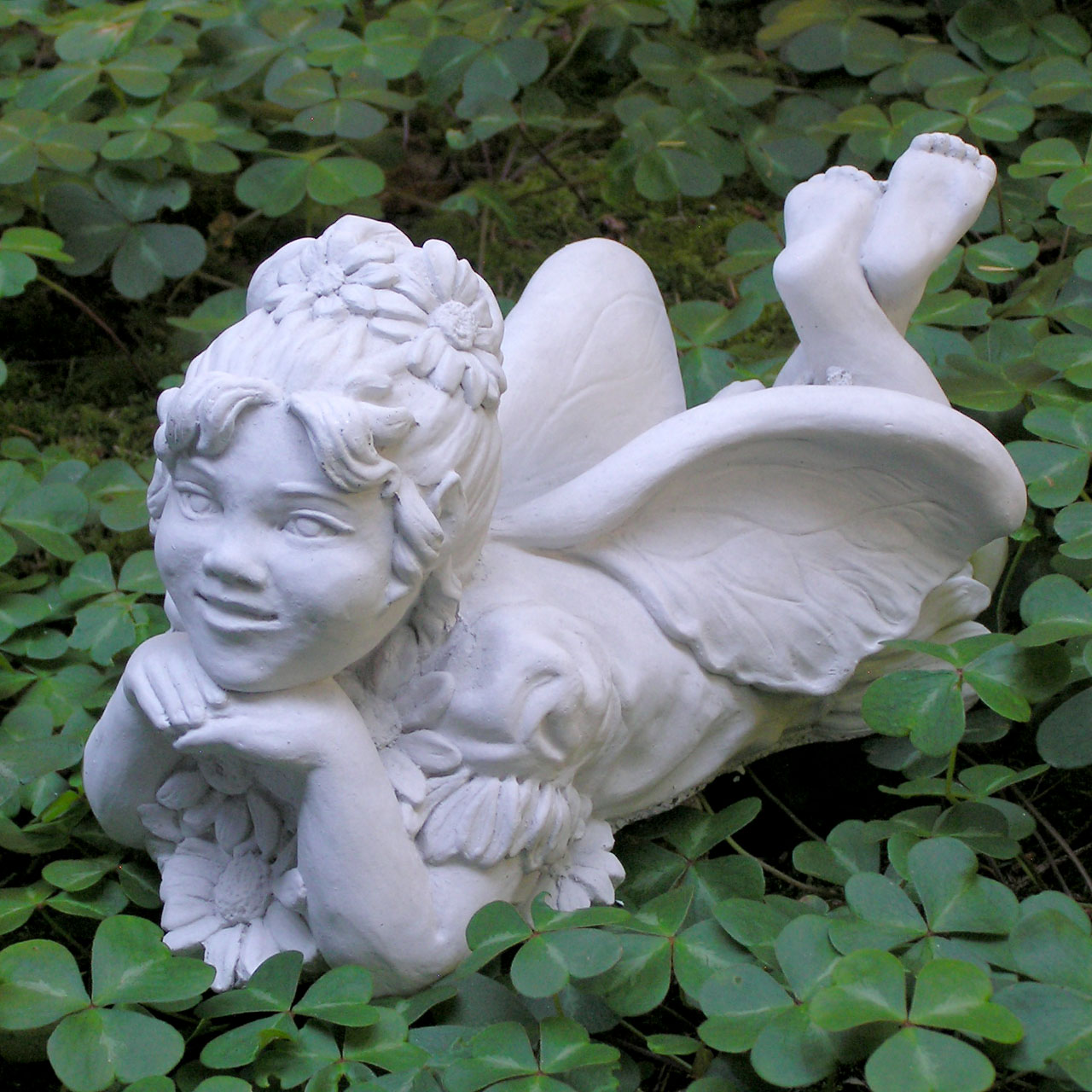 Daisy Fairy Ag