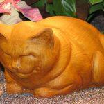 Fat Cat Tc