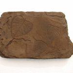 Fossil Stepstone Dw