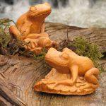 Frog Pair Tc