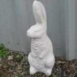 Hare Ag