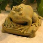 Kiss Me Frog Wb