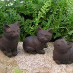 Kitten Trio Dw