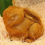 Lop Ear Bunny Tc