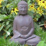 Meditating Buddha Dw