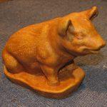 Mini Pig Tc