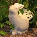 Rabbit Ag
