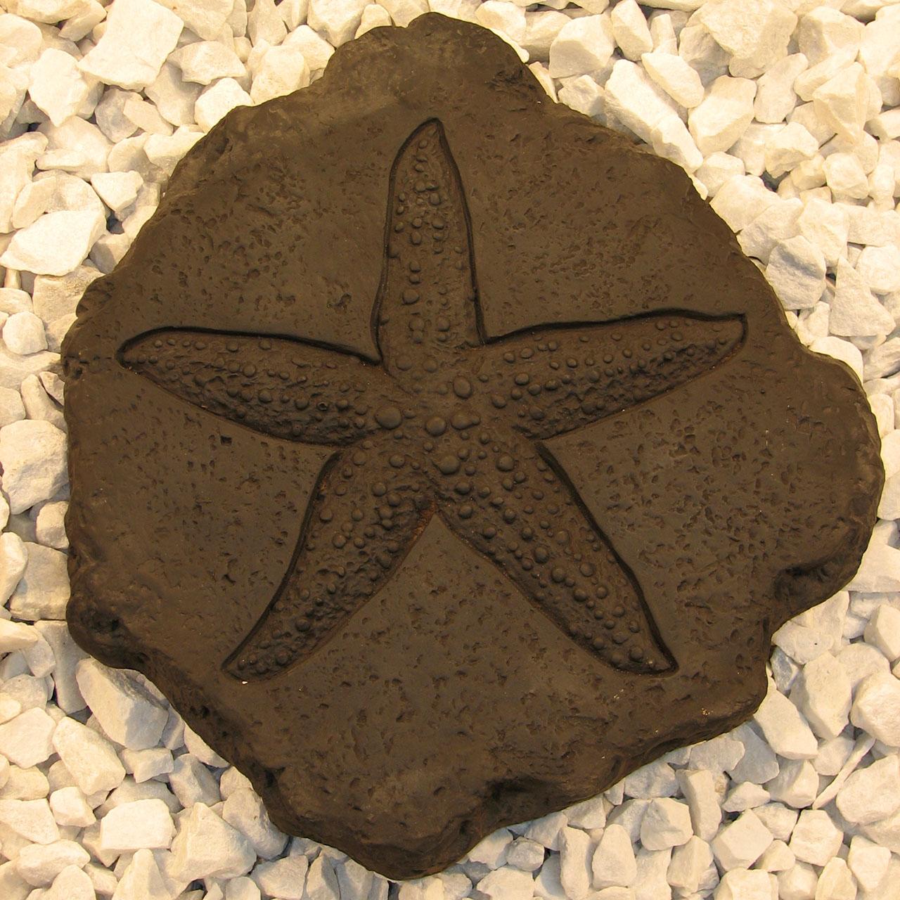 Starfish Stepstone Stepstone