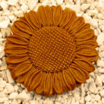 Sunflower Stepstone Tc